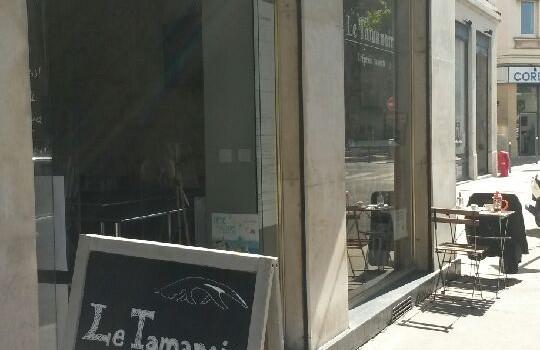 Un tamanoir rôde à Lyon 7e