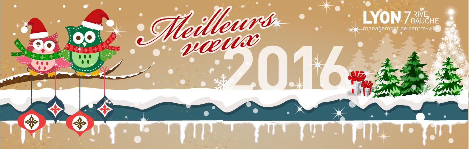 Adieu 2015 - Carte de vœux 2016 -