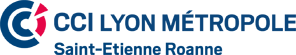 logo_CCI-Lyon-Metropole-Saint-Etienne-Roanne