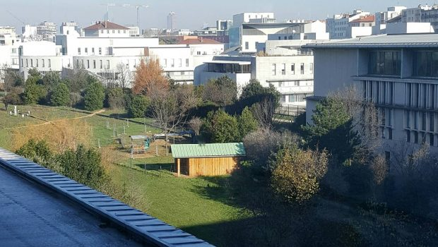 Circulation alternée à Lyon et Villeurbanne