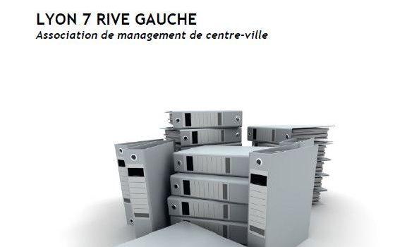 Lyon 7 Rive Gauche publie son rapport d'activité 2016